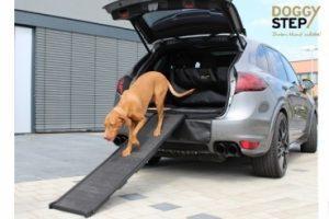 Auto Hundebox mit Hundegitter